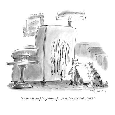 """I have a couple of other projects I'm excited about."" - New Yorker Cartoon"