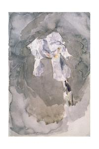 White Iris by Mikhail Alexandrovich Vrubel