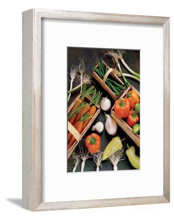 Mild Salsa--Framed Art Print