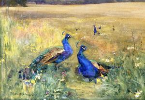 Peacocks in a Field by Mildred Anne Butler