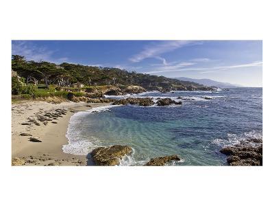 Mile Drive Monterey-Michael Polk-Art Print