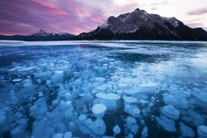 Bubbles and Cracks in the Ice by Miles Ertman