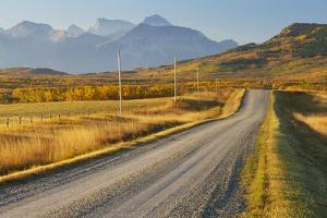 Country Road Through a Mountainous Landscape, Near Twin Butte, Alberta, Canada, North America by Miles Ertman