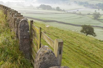 Gate in Stone Wall and Field by Miles Ertman