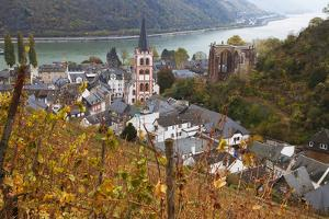 Overview of Bacharach and the Rhine River in Autumn, Rhineland-Palatinate, Germany, Europe by Miles Ertman