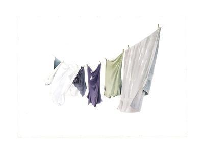 Spring Washing-Line, 2003