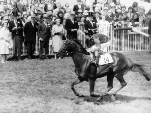 Milford Horseracing and Jockey Lester Piggott