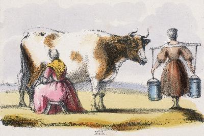 Milk, C1845-Benjamin Waterhouse Hawkins-Giclee Print
