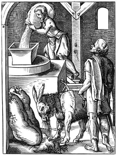 Miller, 16th Century-Jost Amman-Giclee Print