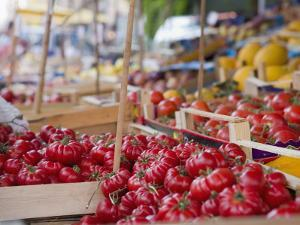 Tomatoes on Street Market Stall, Palermo, Sicily, Italy, Europe by Miller John