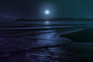 Beach Moon by Milli Villa