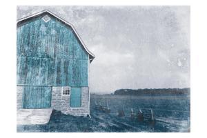 Blue Barn Mate by Milli Villa