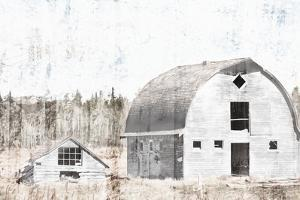Broken Down White Barn by Milli Villa