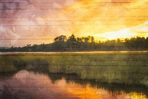 Marsh Sunset by Milli Villa