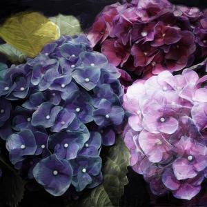 Purple Flower Bushels by Milli Villa