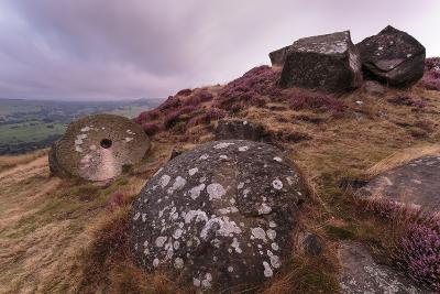 Millstone Amongst Heather and Lichen Covered Boulders at Dawn-Eleanor Scriven-Photographic Print