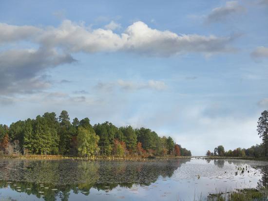 Millwood Lake, Millwood Lake State Park, Arkansas, Usa-Tim Fitzharris-Photographic Print