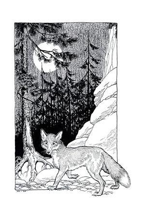 Seeker the Royal Fox - Child Life