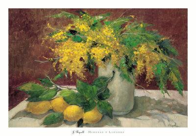 https://imgc.artprintimages.com/img/print/mimosas-y-limones_u-l-f1j21f0.jpg?p=0