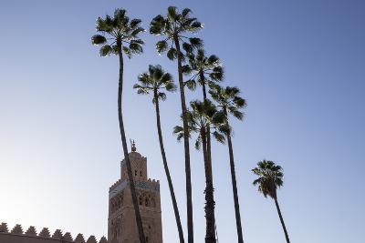 Minaret of Koutoubia Mosque with Palm Trees, UNESCO World Heritage Site, Marrakesh, Morocco-Stephen Studd-Photographic Print