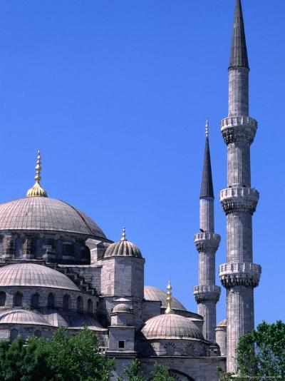 Minarets and Domes of Blue Mosque (1609-19), Istanbul, Turkey-Wayne Walton-Photographic Print