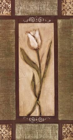 White Tulips I