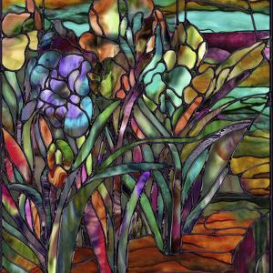 Candy Coated Irises by Mindy Sommers