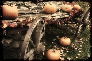 Pumpkin Wagon by Mindy Sommers