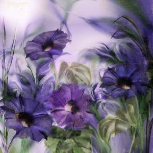 Purple Dream I by Mindy Sommers