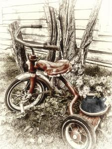 Red Tricycle by Mindy Sommers