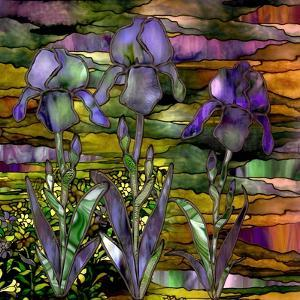 Sunset Irises by Mindy Sommers