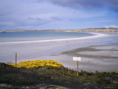 Mined Beach from the Falkland War, Near Stanley, Falkland Islands, South America-Geoff Renner-Photographic Print