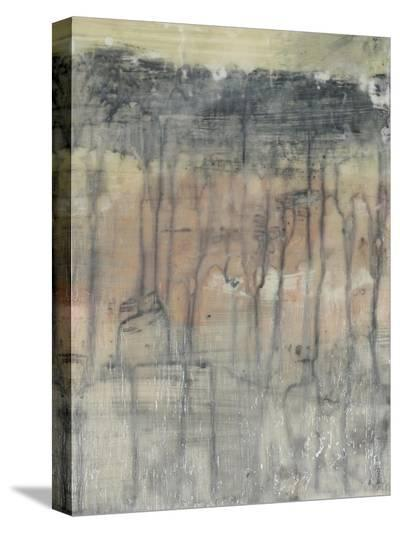 Mineral Layers II-Jennifer Goldberger-Stretched Canvas Print