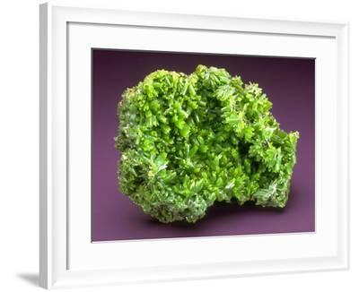 MineralCalendar: Pyromorphite. Ussel, France--Framed Photographic Print