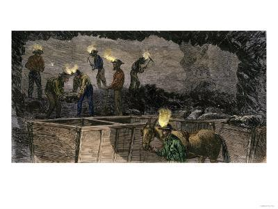 Miners Digging and Loading Coal Into an Underground Mule-Drawn Cart in Pennsylvania, c.1860--Giclee Print