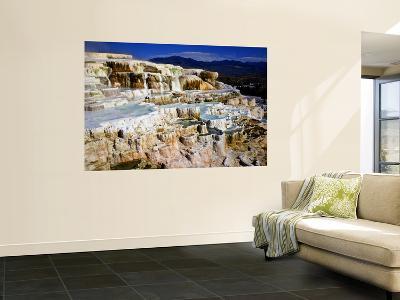 Minerva Terrace, Mammoth Hot Springs, Yellowstone National Park, Wyoming, USA-Bernard Friel-Wall Mural