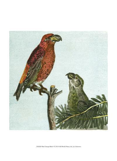 Mini Vintage Birds I--Art Print