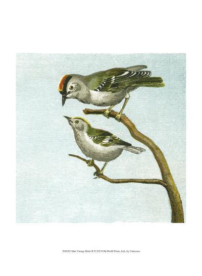 Mini Vintage Birds II--Art Print