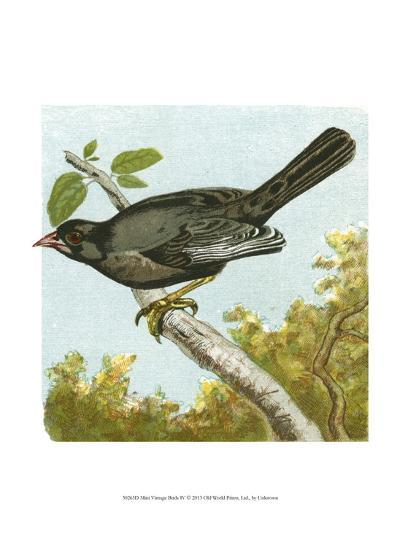 Mini Vintage Birds IV--Art Print