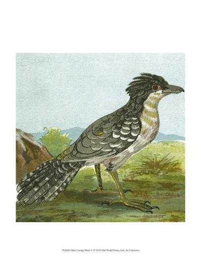 Mini Vintage Birds V--Art Print