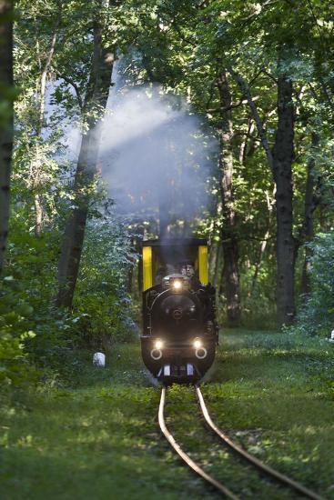 Miniatur Railway in the Prater, Steam Locomotive Da2, Vienna, Austria, Europe-Gerhard Wild-Photographic Print