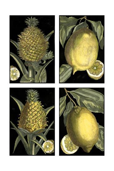 Miniature Fruit--Art Print