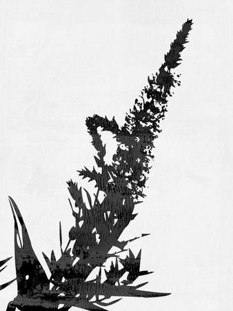 https://imgc.artprintimages.com/img/print/minimalist-black-flower-iii_u-l-q1gv7cx0.jpg?p=0