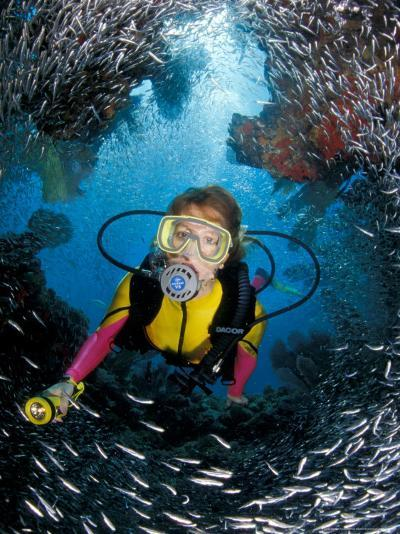 Minnow Caves and Scuba Diver, Key Largo, Florida, USA-Michele Westmorland-Photographic Print