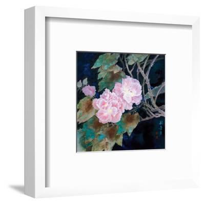 Cotton Roses