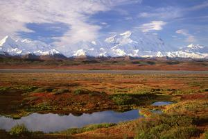 Tundra and Kettle Pond in Denali National Park, Alaska in the Fall. Mount Mckinley in the Backgroun by Mint Images - David Schultz