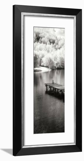 Mint Springs Lake Panel II-Alan Hausenflock-Framed Photographic Print