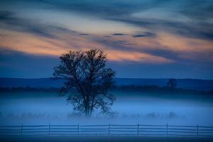 Moody Morning Landscape, Gettysburg Battle Field, Adams County, Pennsylvania, USA by Mira