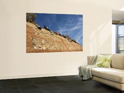 Mirador De San Nicolas, Albaicin-Karl Blackwell-Wall Mural