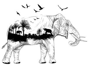 Double Exposure - Elephant by Mirifada